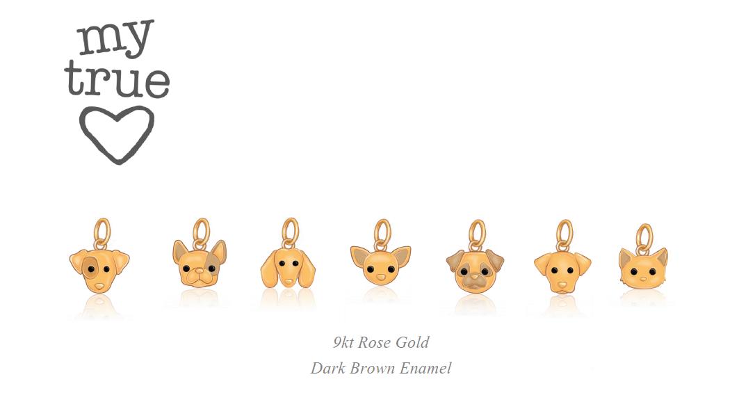 Dodo animal charms