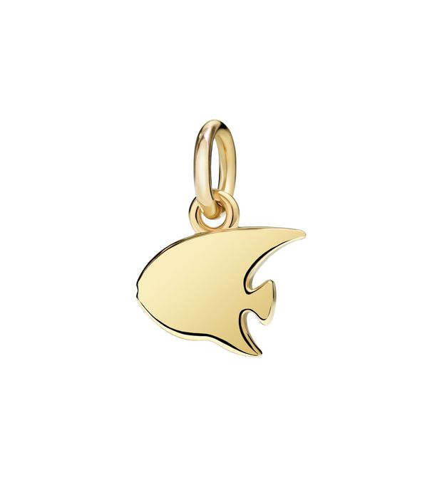 Dodo - YG CHARM ANGELFISH