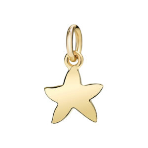 Dodo - YG SMALL CHARM STARFISH