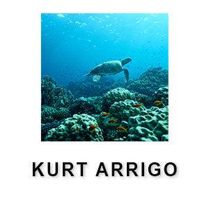 Kurt Arrigo